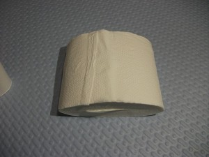 Mobile toilet paper11