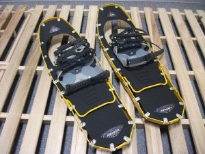 Snow shoes1
