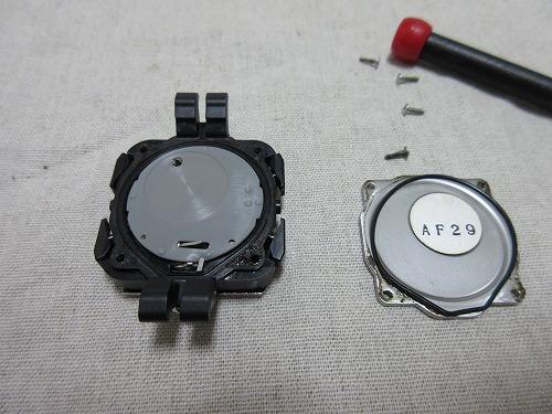 g-81009