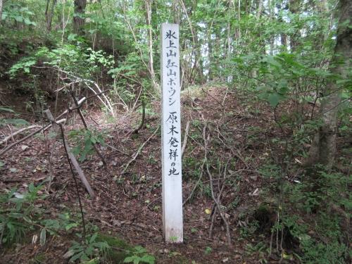 hikamiyama-11
