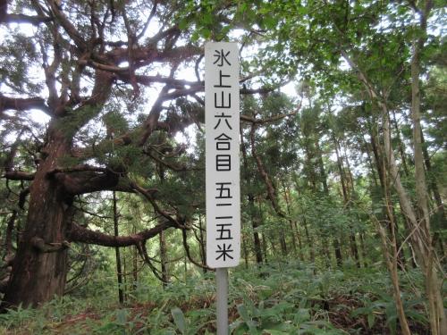 hikamiyama-15