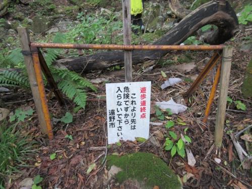 fujisawanotaki-20